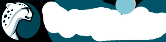 playtika-logo